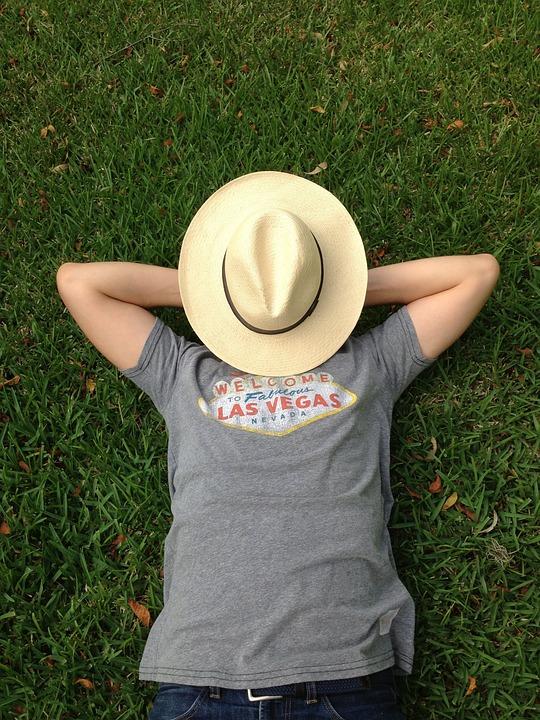 Grass, Summer, Nap, Outdoor, Field, Green, Sunny, Day