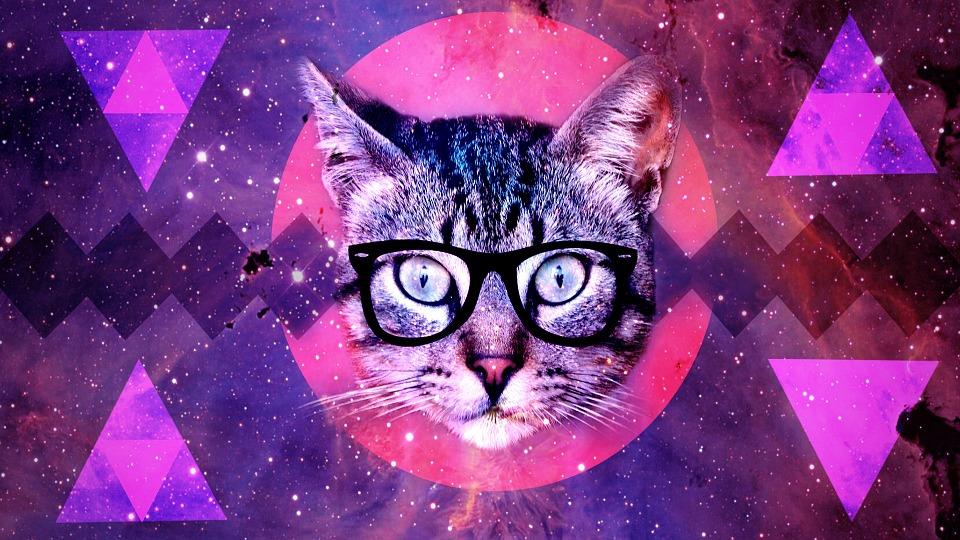 Free Illustration Cat Background Design Cat Face