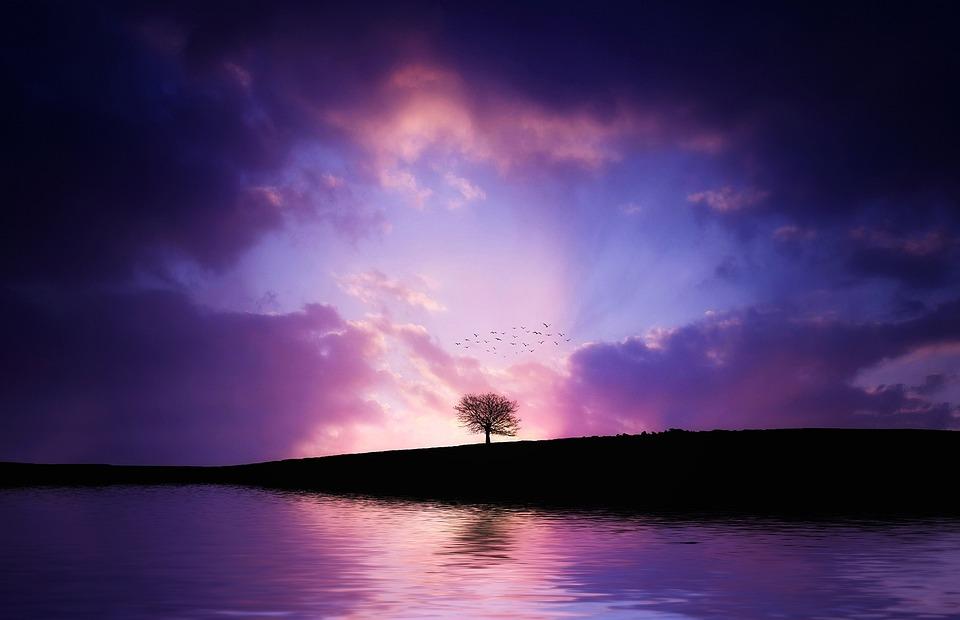 ツリー, 湖, 反射, 風景, 自然, 空, 水, ロマンチック, 静かな, 穏やかな, リラックス