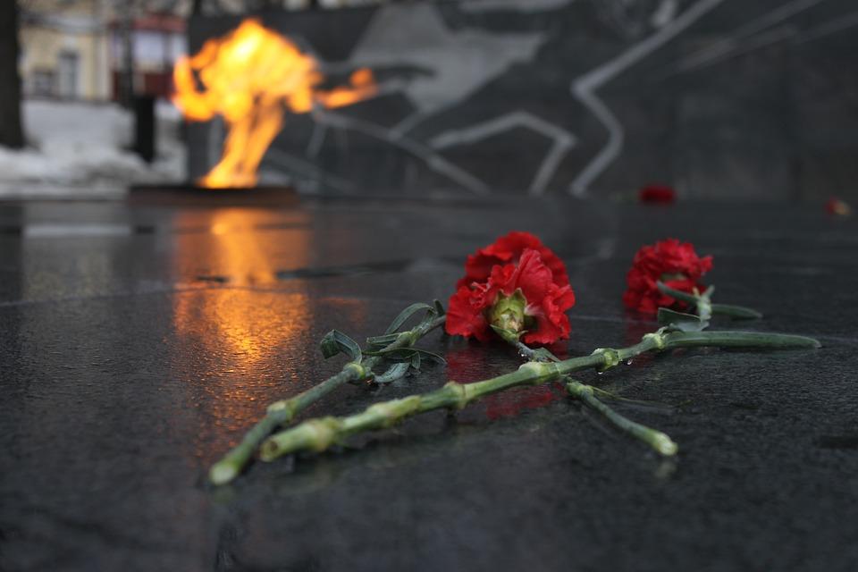 День Победы, 9 Мая, Вечный Огонь, Гвоздики