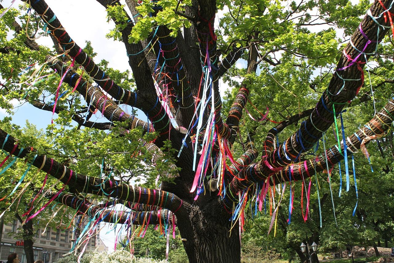 Деревья с ленточками картинки