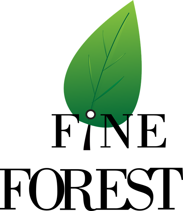 Logo Forest Symbol Free Vector Graphic On Pixabay