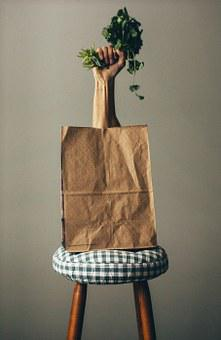 Bag, Grocery, Groceries, Shop, Shopping
