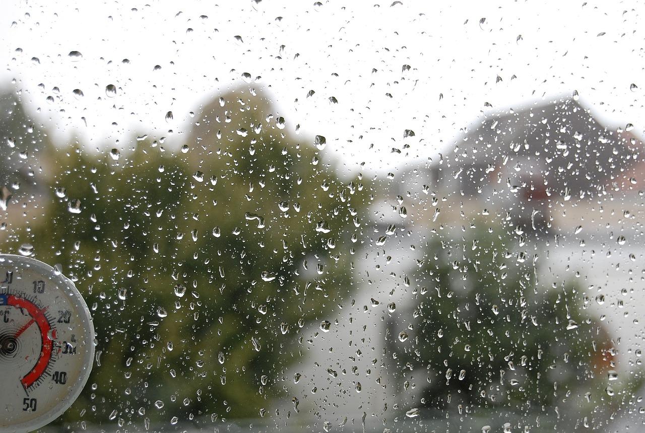 Погода форекс нижний новгород