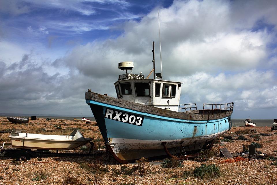 Sea Fishing Hooks Size Chart: Catching Fish - Free images on Pixabay,Chart