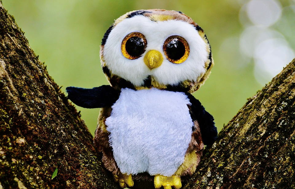 free photo owl glitter stuffed animal cute free