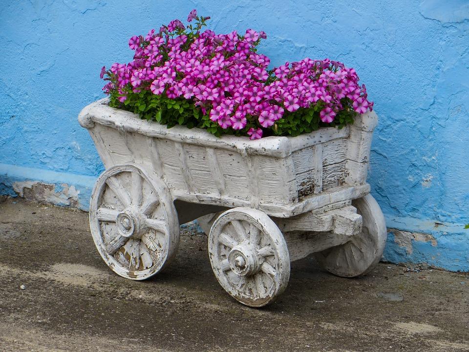 Magnolie Farbe war nett ideen für ihr haus design ideen