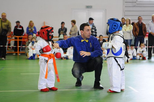 Karate, Kids, Explication, Martial