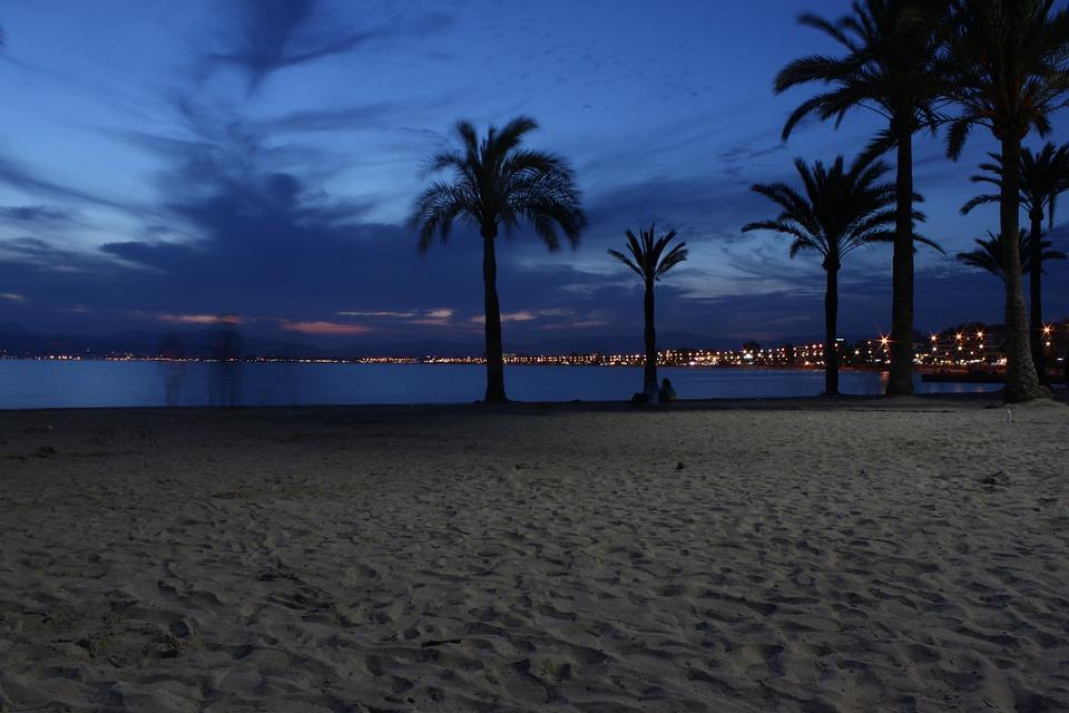 Landscape Beach Night Palm Sand Sky Silhouette