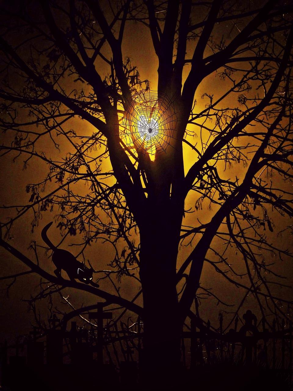 картинки деревьев ночью минимализм изысканные праздничные