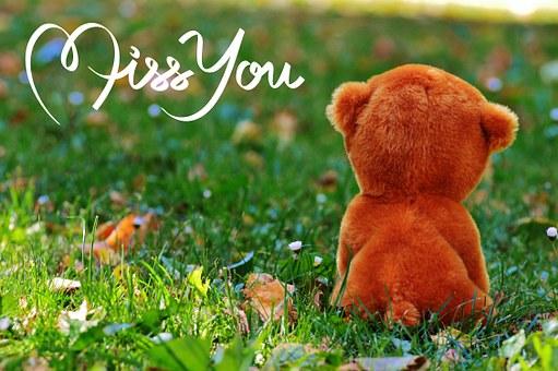 Vermissen, Liebe, Freundschaft, Teddy