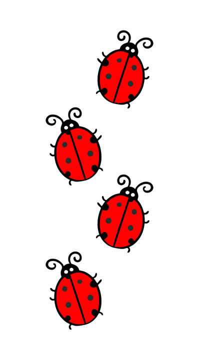 Ladybug, Red, Black, Point, Beetle, Vector, Ornament