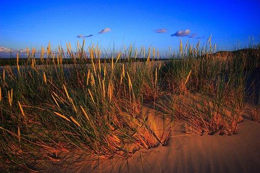The Sand Dunes, Dune