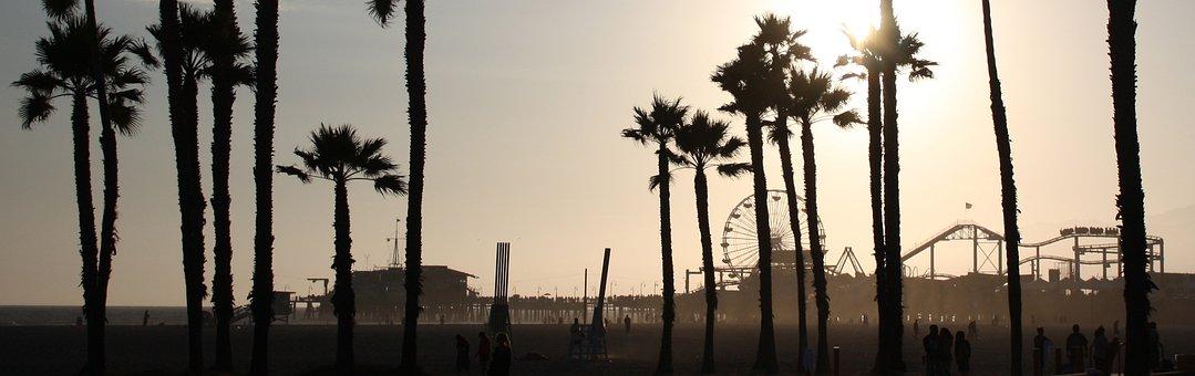 Beach Scene Silhouette Palm Trees San