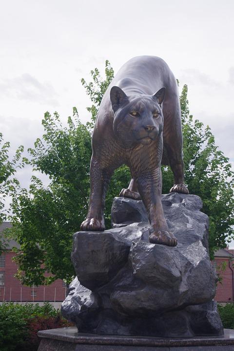 cougar statue mountain lion free photo on pixabay