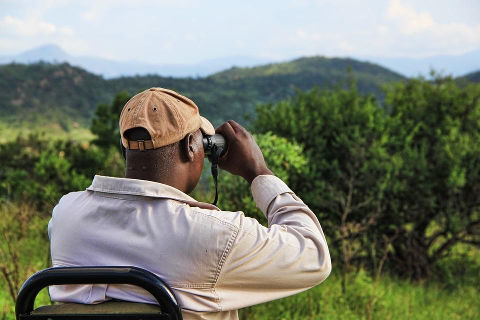 Pirsch afrika fernglas kostenloses foto auf pixabay