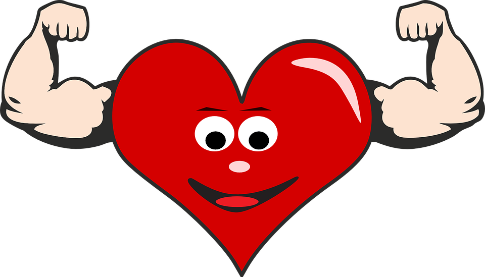 heart health free images on pixabay