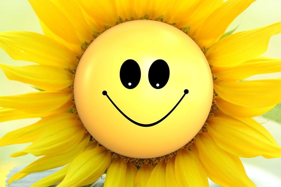 Illustration gratuite fleur du soleil fleurs smily image gratuite sur pixabay 865734 - Fleur du soleil ...