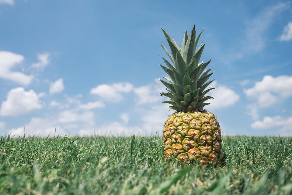 Piña, Verde, Naturaleza, Los Alimentos, Saludable