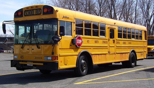Free Photo School Bus America Transportation Free