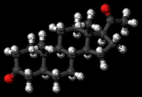 Dihydroprogesterone, Steroid, Hormone