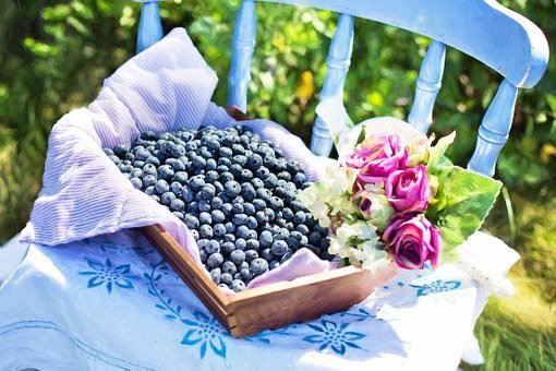 Blueberries, Summer, Fruit, Healthy