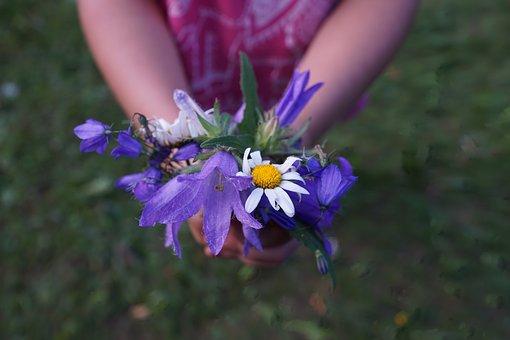 Blumen, Strauss, Lila, Hände, Kind