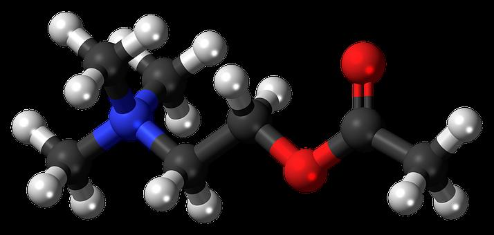 Acetylcholine, Cation, Neurotransmitter