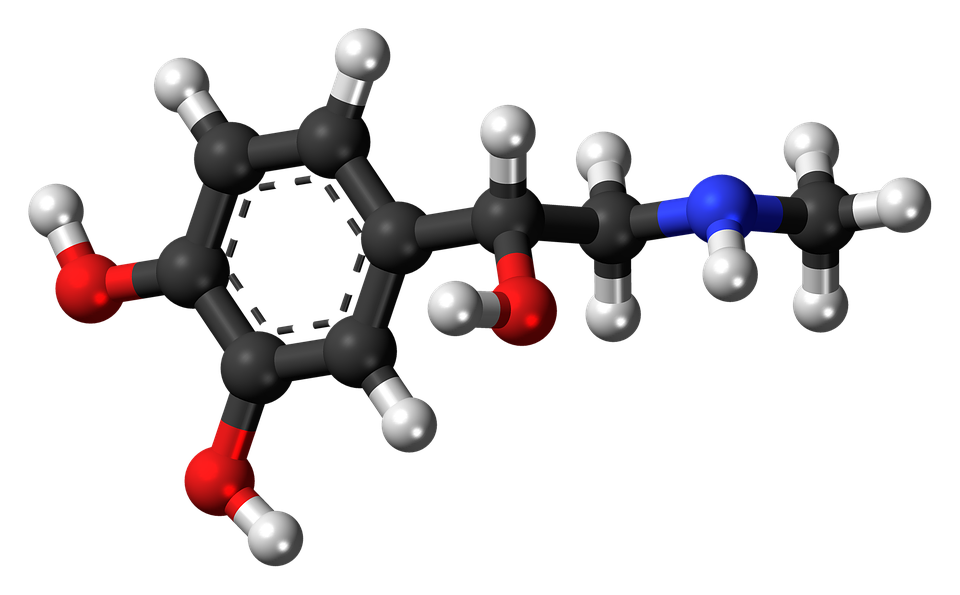 Adrenalina, Epinefrina, Hormona, Molécula, Modelo