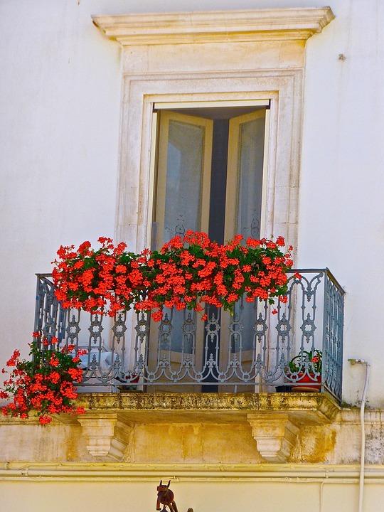 Rot Blumen Balkon Kostenloses Foto Auf Pixabay