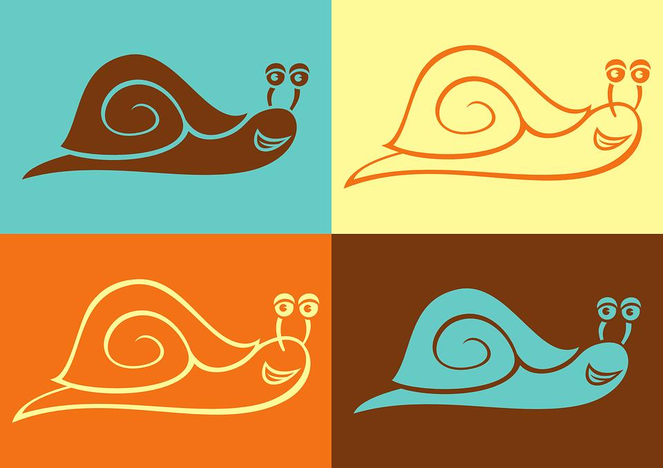 Schnecke Vektor Farbe Kostenlose Vektorgrafik Auf Pixabay
