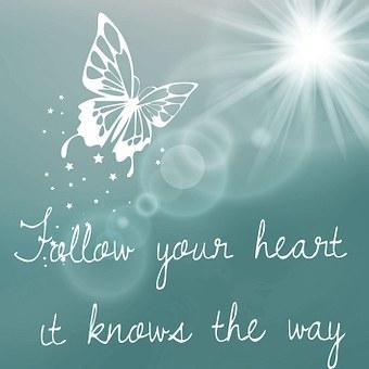 あなたの心の文字列, と言って, 知恵, 蝶, 太陽, 喜び
