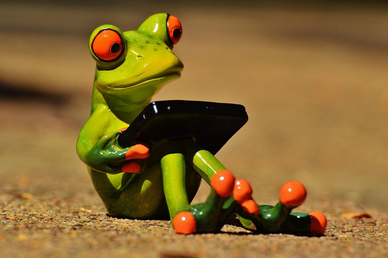 Картинки смешные с лягушками, поздравлениями для васи