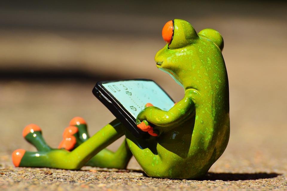 Free photo frog computer funny fun free image on pixabay 881661 - Funny frog pictures ...