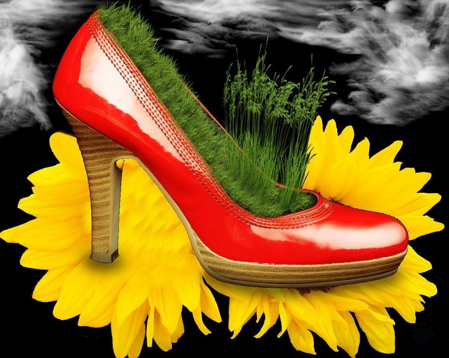 info for 69d16 fea4f Scarpe Fiore Girasole - Immagini gratis su Pixabay
