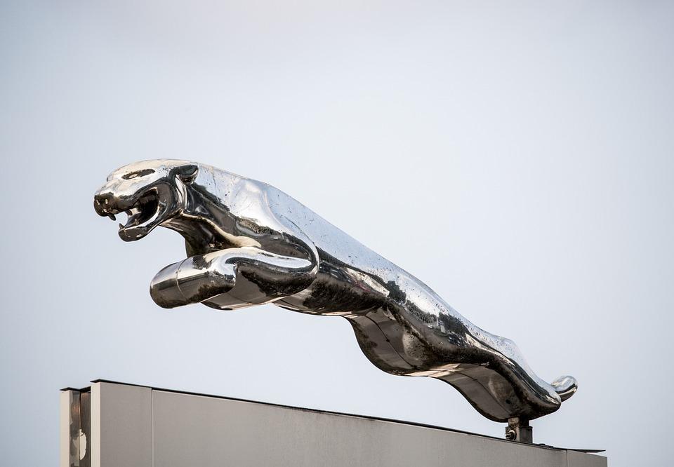 Jaguar Car Brand Emblem Free Photo On Pixabay