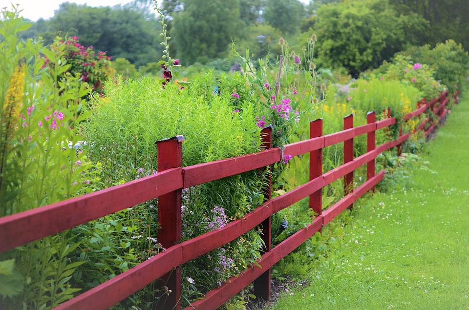 Nice Fence, Garden, Wood, Wooden, Plank, Green, Summer