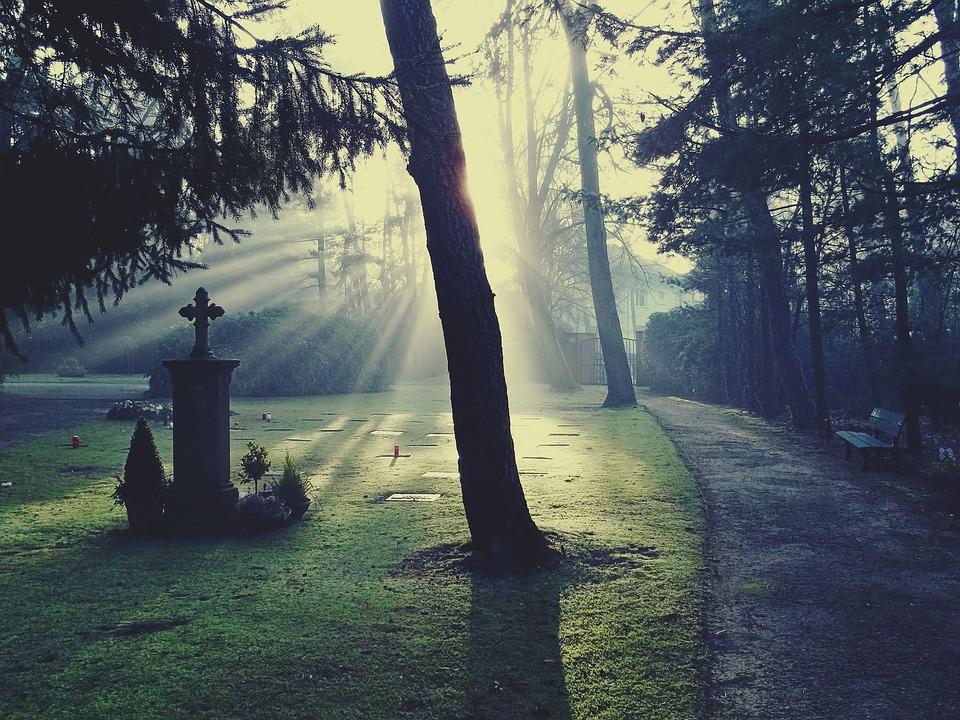 Free Photo Cemetery Light Glow Sun Free Image On