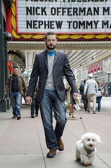 Perro, Teatro, Animales, Paseo, Hombre, Calle