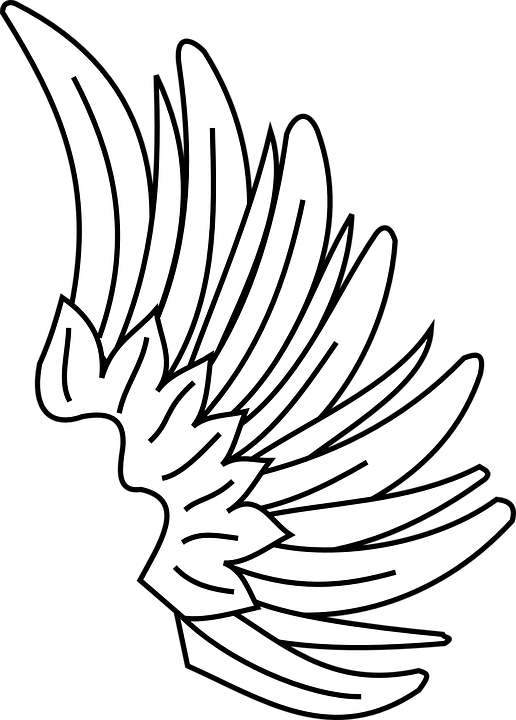 Lambang Bersayap Gambar Pixabay Unduh Gratis Sayap Simbol Desain Grafis