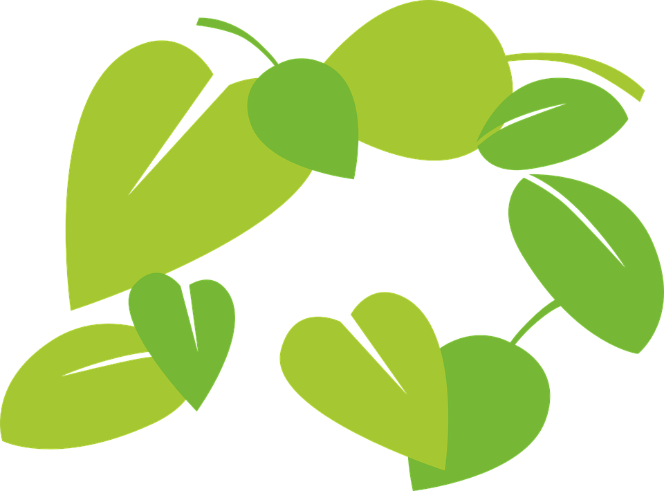 leaves vector green free vector graphic on pixabay rh pixabay com vector leaves free victor leaves yuuri pregnant fanfiction