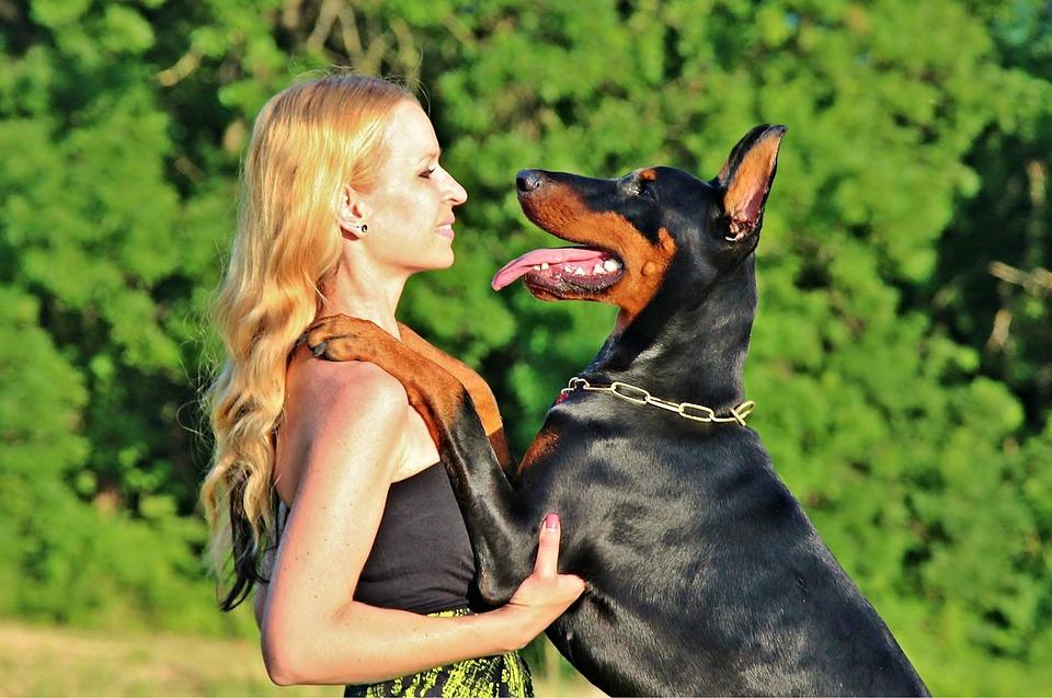 sexy Frau mit Hund Stockfotos und lizenzfreie Bilder