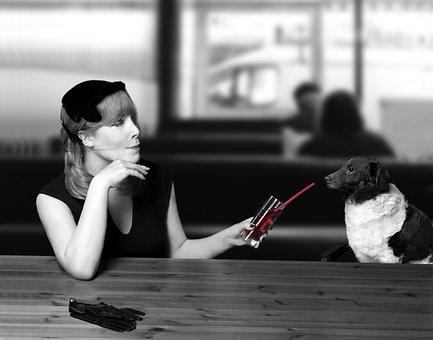 Dog, Dog Advisor, Non-Fiction, Cocktail