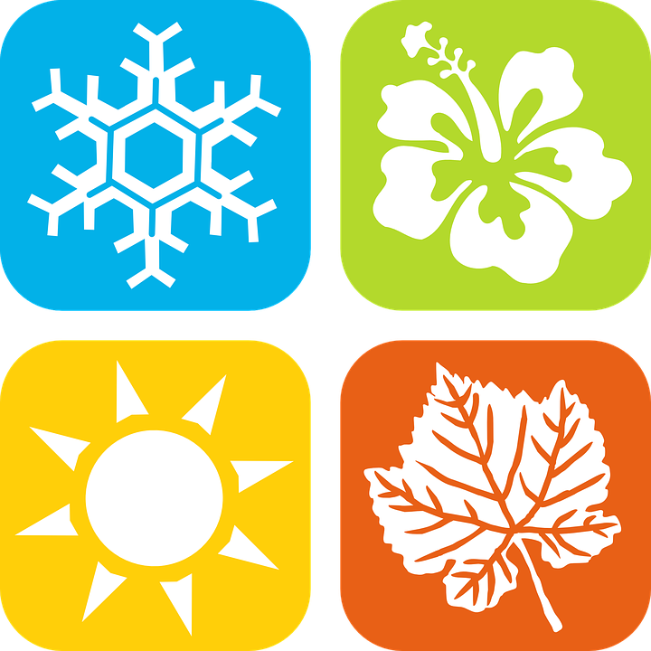 Season, Winter, Spring, Summer, Fall, Autumn, Snowflake