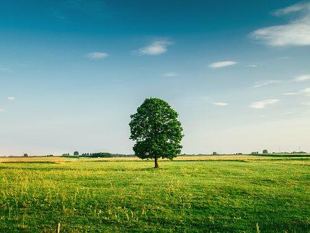 农业物联网:智能农业的五种技术发展分析