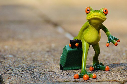 Frog, Farewell, Travel, Luggage, Holdall