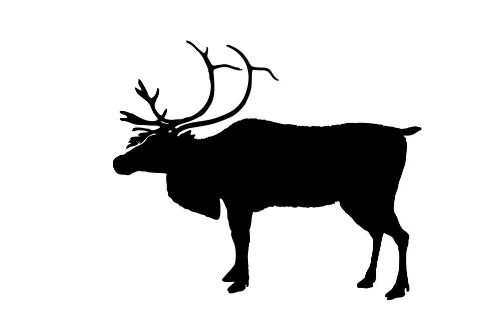 Reindeer Black Silhouette 183 Free Image On Pixabay