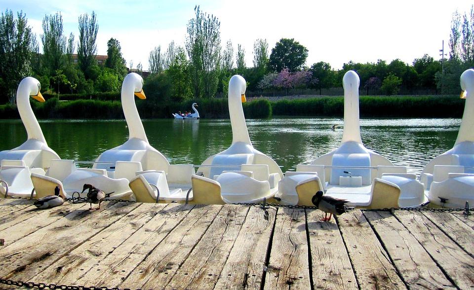 Park, Cabecera, Valencia, Pedalos, Lake, Pond, Spain