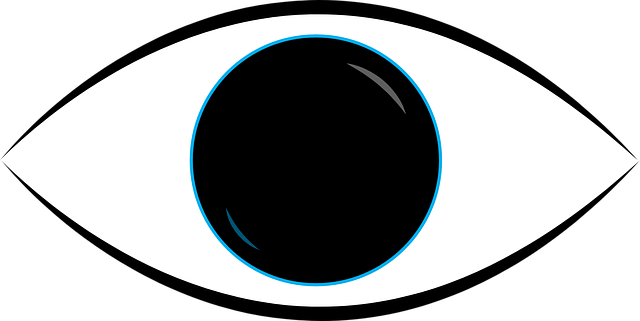 eye look 183 free vector graphic on pixabay