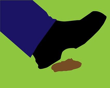 Step Tread Poop Dog Poop Dog Mess Shoe Foo